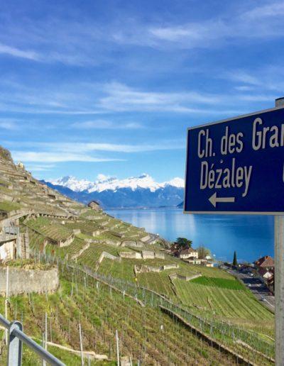Chemin du Dézaley, Puidoux
